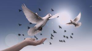 אמונה עסקית איך משלבים רוחניות בעסק.