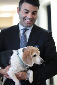 יום עבודה עם הכלב יתרונות לעובדים וגם למעסיקים